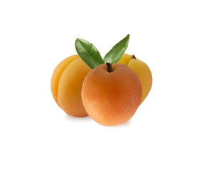 three apricots isolated on white background. Ripe apricots  with copy space for text. Apricots isolated on white background. Fruit on white background.