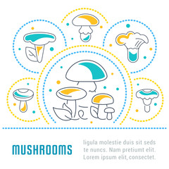 Website Banner and Landing Page of Mushrooms.