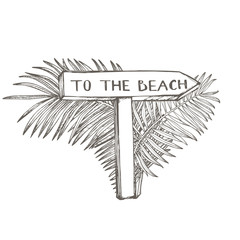 Composition this Signboard To the beach and Tropical palm leaves, vector illustration. Graphic hand drawn painted illustration. Place for text.