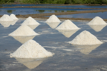 The white salt field on a sunny day. Royalty high-quality free stock footage of white salt field in a beach village. Salt is an important food for people