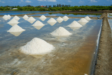 White salt field in sunny day. Royalty high quality free stock footage of white salt field in a beach village. Salt is an important food of people