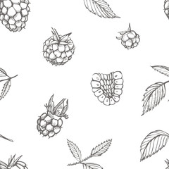 Hand drawn raspberry. Retro sketch style vector illustration. Perfect for invitation, wedding or greeting cards. Seamless pattern.