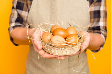 Cropped close up photo of tasty fresh delicious big organic natural brown eggs lying in small little wicker basket on straw man's hands holding tray with product isolated on bright background