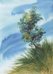 Watercolor hand drawn illustration of alone tree with long grass on hill against blue sky. Countryside.