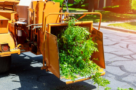 Wood chipper blowing tree branches cut A tree chipper or wood chipper is a portable machine used for reducing wood into smaller wood chips.