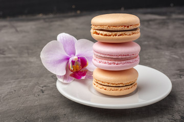 Delicious, colorful cookies macarons on the plate. Orchid flower as decoration. Dark background