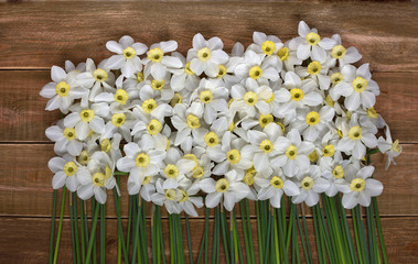 Close up of fresh narcissus on a wooden table. Spring and celebration concept background.