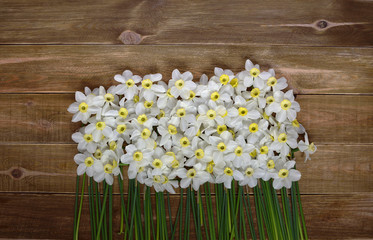 White  fresh narcissus on a wooden table. Spring and celebration concept background.