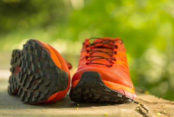Close up of a pair of colorful trail running shoes in the forest. Shallow D.O.F.