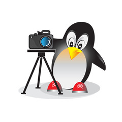 Illustration of penguin with photo camera. Branding illustration for photo studio or company.