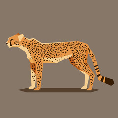 Flat geometric Cheetah