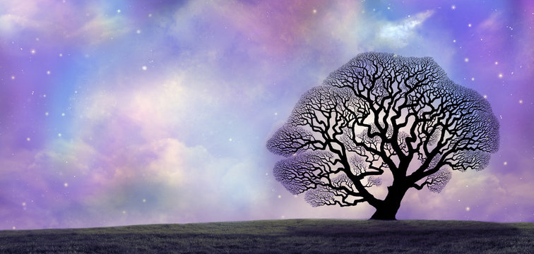 Great Oak and Magical Night Sky - silhouette of oak tree skeleton isolated on the horizon against an ethereal blue pink cosmic night sky with copy space on left