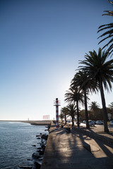 Quay with palmtrees at Porto harbor entrance