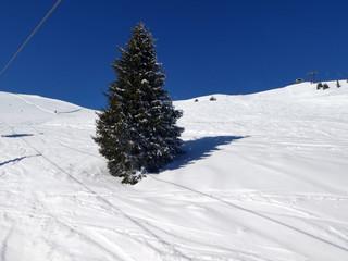 Skifahren in Saalbach Hinterglemm Leogang