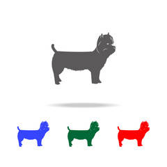 West Highland Terrier icon. Elements of dogs multi colored icons. Premium quality graphic design icon. Simple icon for websites, web design; mobile app, info graphics