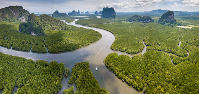 Aerial view of a huge natural mangrove forest with towering limestone cliffs (Phang Nga, Thailand)