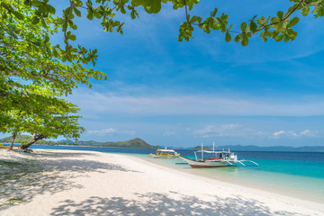 Tropical beach on the Dibutonay Island, Busuanga, Palawan, Philippines. Beautiful tropical island with sand beach.  Travel concept