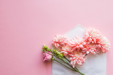 Bunch of pink chrysanthemums in an envelope. message for you. Happy Mother's Day. flowers background.Mother's Day greting card.