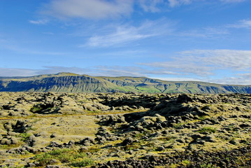 Iceland. Lava fields covered with moss