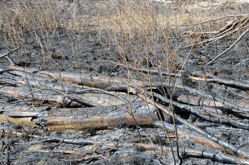 Pyromanie Piromania هوس الحرائ...