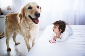 The small baby lies on the bed and looks at dog