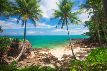 Fototapeta tropical beach, Koh Lanta, Krabi, Thailand obraz