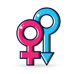 Gender icon on the white background. Vector, illustration, eps 10.
