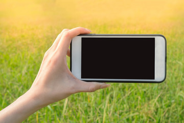 Woman hand holding smartphone landscape view in green grass farm background.blank scren for copy space.