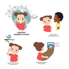 Illustration of human senses