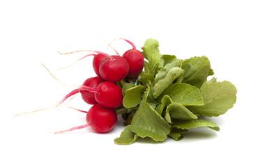 bunch of red radish