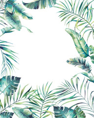 Watercolor tropical flora cover. Hand drawn cover design with exotic leaves and branches isolated on white background. Palm tree, banana leaves, mostera plants