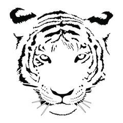 Tiger face black and white image. Monochrome symbol vector illustration