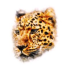 Cheetah Watercolor painting Art
