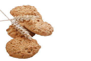 Healthy vegan integral cookies made of hazelnut powder & linseed isolated on white background. Home made vegetarian sugarless & gluten free snack w/ nuts. Decorative wheat spica. Close up, copy space.