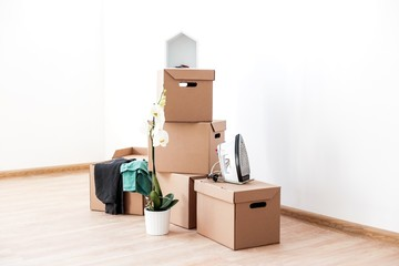 Cardboard boxes with clothes and Orchid flower stand on the floor in an empty room with white walls