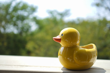 A yellow duck container with green plants bokeh. Very cute and good for use as background.