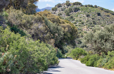 A mountain road on Crete, Greece. Scenic landscape, green hills, blue sky, olive trees and brush.