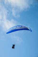 Paraglider in action