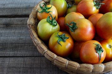 Close up harvest tomatoes keep in basket on old wood floor.