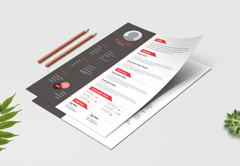 Dark Gray and White Resume Layout