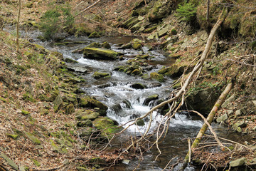 mountain brook flowing through the rocky valley, Beskydy mountains, Czech Republic