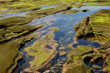 Rocky coast with puddles at low tide, The confital, Gran canaria