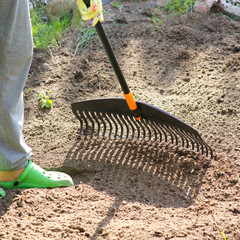 Planting plants step by step / Preparing the place for planting plants / Raking in the Garden