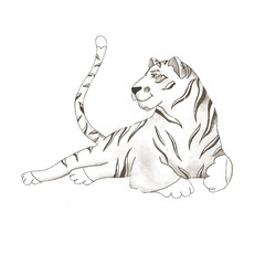 tiger digital clip art cute animal of africa sketch
