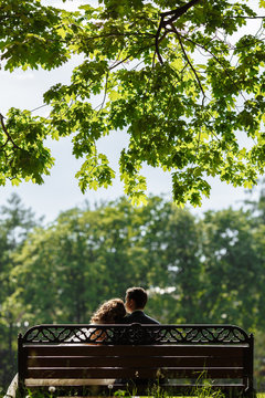Couple sitting on a bench under a big tree