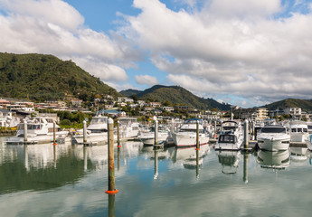 boats moored in Picton marina, South Island, New Zealand