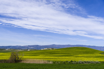 hill landscape at spring with sky and meadow