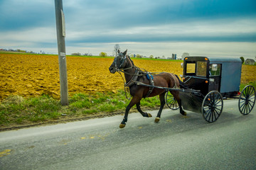 An Amish horse and carriage travels on a rural road in Lancaster County,Pennsylvania