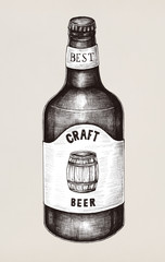 Hand drawn of craft beer bottle