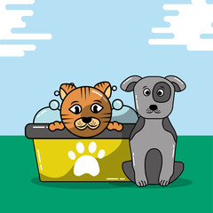pet cat and dog grooming bathtub shampoo vector illustration